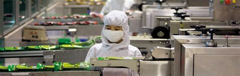 cuisine industrie food processing industry anb solutions