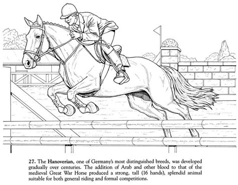 Horse Coloring Page Of Hanoverian Champion