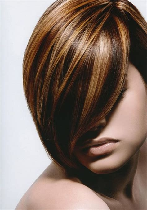 honey highlights on light brown hair honey highlights on light brown hair 20 nicest light