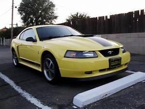 Kurt1475 2003 Ford MustangMach 1 Premium Coupe 2D Specs, Photos, Modification Info at CarDomain