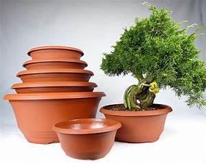 Pots à épices : plastic pots for bonsai nursery stock ~ Teatrodelosmanantiales.com Idées de Décoration