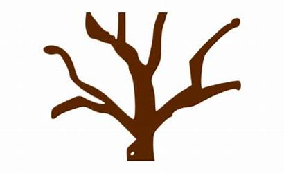Tree Clipart Trunk Branch Branches Transparent Vippng