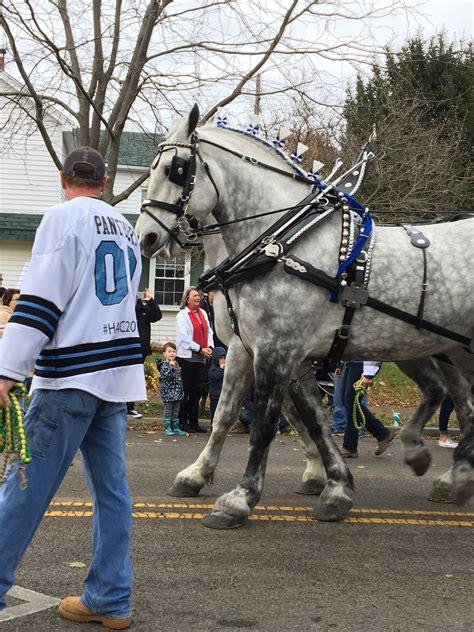 draft horses riding horseback