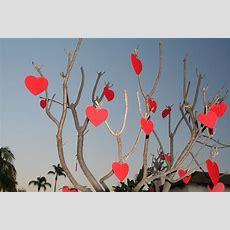 Valentine's Day  Wikimedia Commons
