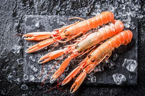 comment cuisiner des langoustines réussir la cuisson de vos langoustines crues fraîches