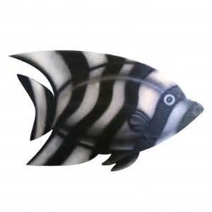 types  zebrafish types
