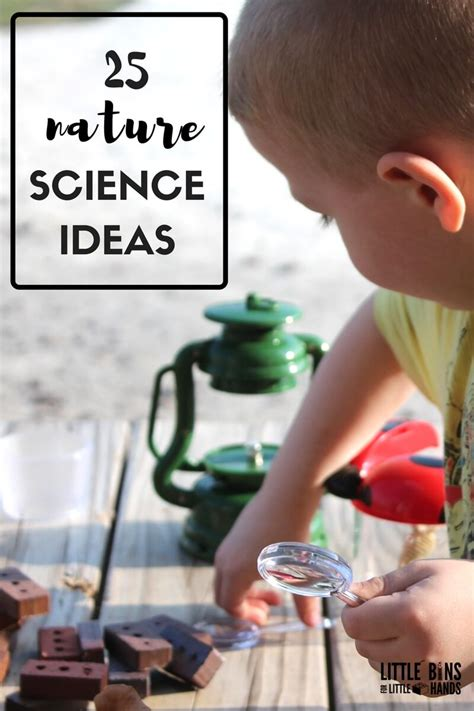 preschool stem activities  science experiments  kids
