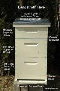 Parts Of A Beehive - Beginner Beekeeper U0026 39 S Guide - Beekeeping