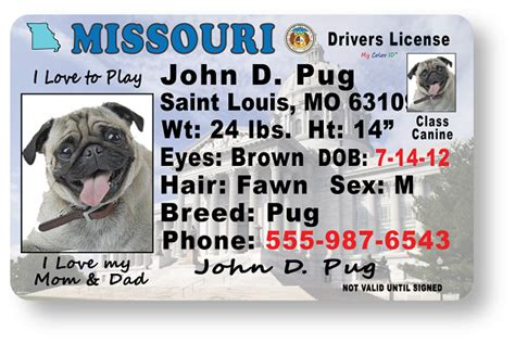 Lost My Missouri Boating License by Missouri Drivers License