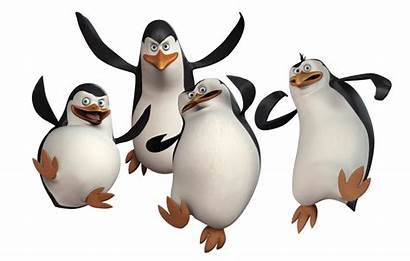 Madagascar Penguins Attack United Purepng Transparent