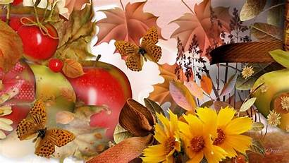 Harvest Fall Desktop Autumn Background Flower Wallpapers