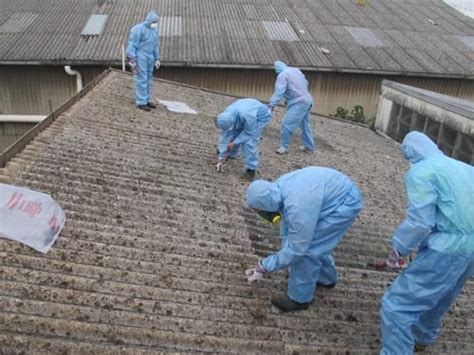 safe asbestos disposal  removal services  sydney