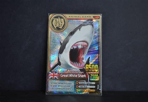 great white shark animal kaiser wiki fandom powered