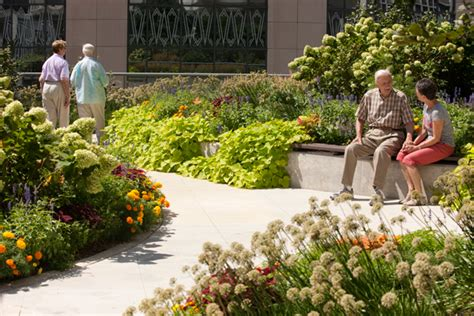 The Benefits of Outdoor Spaces for the Elderly | My ...