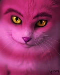 pictures of cheshire cat the real cheshire cat the cheshire cat photo 23507016