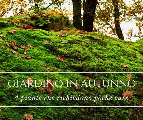 giardino autunno il giardino in autunno quattro piante richiedono