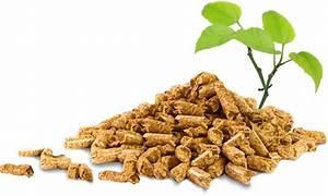 Pellets De Bois : idf pellets b ches briquettess granul s bois ~ Nature-et-papiers.com Idées de Décoration