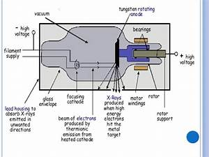 2lab Xray Parts