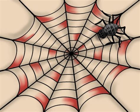 spider web design unique spider meanings and a few ideas to