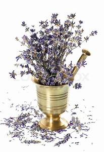 Vintage mortar with dry lavender flowers over white ...