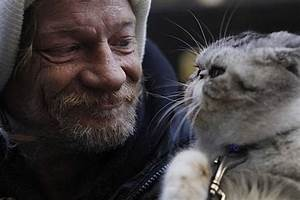 Who the Hell Steals a Cat from a Homeless Guy? « Mission ...