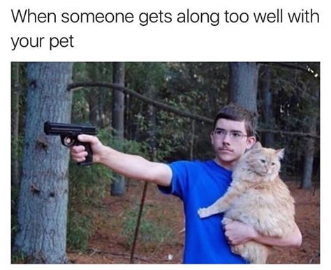 funny cat memes today   cat hates people loldamncom