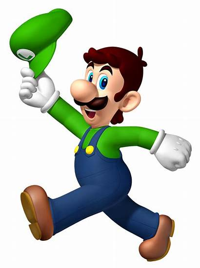 Fantendo Mario Super Bros Wii Wikia Wiki