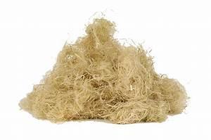 Laine De Chanvre Avantages Inconvénients : fibres de chanvre en vrac technichanvre technichanvre ~ Premium-room.com Idées de Décoration