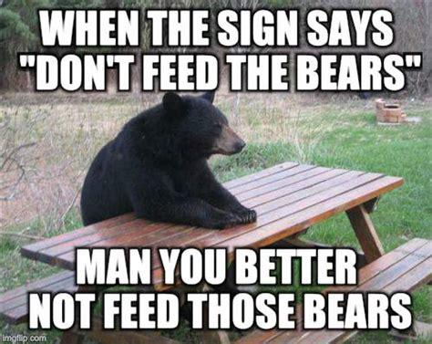 Bears Meme - bad luck bear meme imgflip