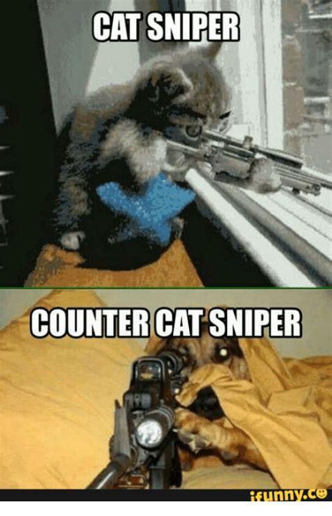 Sniper Memes - sniper cat www pixshark com images galleries with a bite