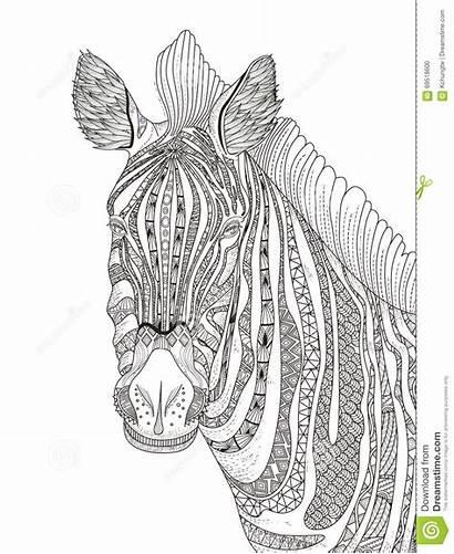 Coloring Zebra Kleurplaat Volwassen Kleurplaten Adult Mandala