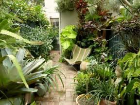 subtropical garden design ideas peter nixon s sydney subtropical courtyard garden gardens pinterest gardens tropical