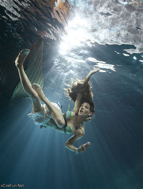 stunning underwater photography  zena holloway