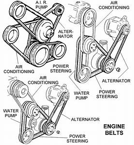Various Engine Belts - Diagram View