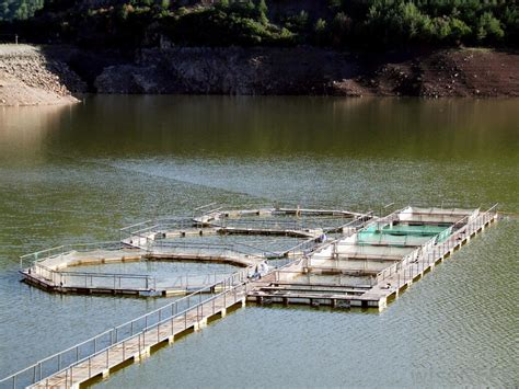 types  aquaculture farms