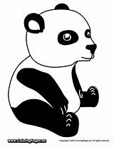 Pandas Albatross Onlycoloringpages sketch template