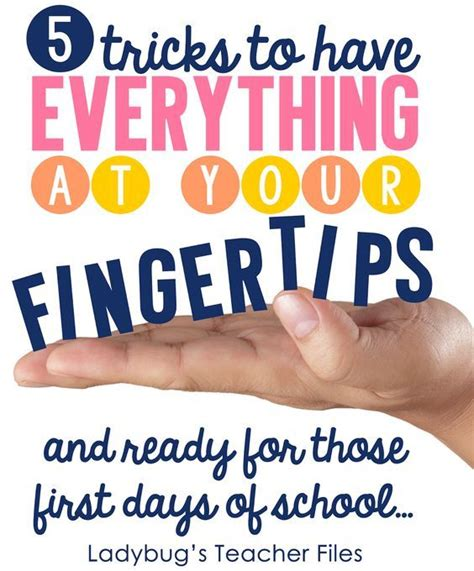 17 best images about days of school on