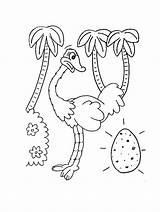Ostrich Coloring Printable Animal Egg Colouring Preschool Animals Crafts Cartoon Activities Kindergarten Bestcoloringpagesforkids sketch template