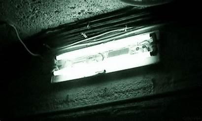 Fluorescent Lights Buzzing Bulbs Hum Buzz Why
