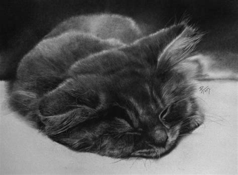 Stunning Photo-realistic Pencil Drawings By Paul Lung