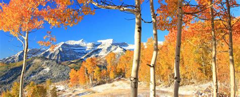 Scow Lake Utah by Salt Lake City Homes For Sale Updated Every 15 Min With