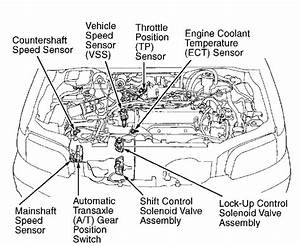 Where Is The Speed Sensor Located In The H22 Vtec Motor