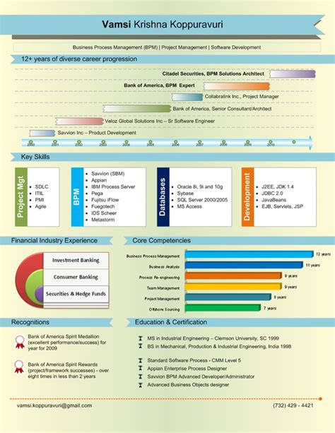 graphs visual resumes infographic and