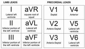 12 Lead Ecg Placement Video