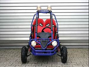 Sport Buggy Für Große Kinder : kinderbuggy gokart f r kinder mit 49cc motor 4 takt motor ~ Kayakingforconservation.com Haus und Dekorationen