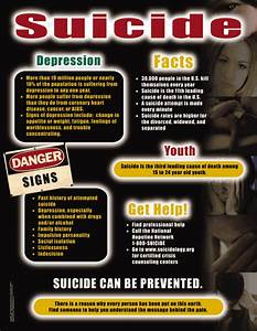 Suicide - Health Issues Poster & Handout [451132] - $19.95 ...
