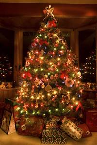 11, Awesome, And, Dazzling, Christmas, Tree, Lights, Ideas