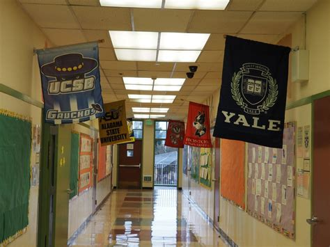 counselors optimistic  resurgence  schools edsource