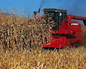 Oklahoma Farm Report - Corn Harvest Going Strong Across ...