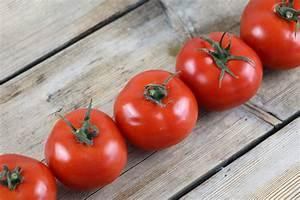 Tomaten Selber Ziehen : tomaten pflanzen selber ziehen so gelingen anzucht und pflege ~ Whattoseeinmadrid.com Haus und Dekorationen